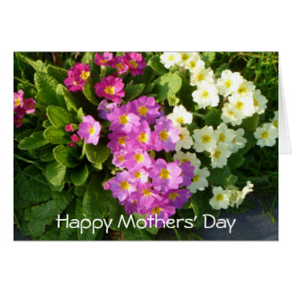 Mothers' Day Card with colourful spring flowers