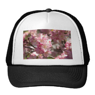 Mother's Day Crabapple Tree Cap
