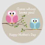 Mothers Day - Cute Owls - Whooo loves you Round Sticker