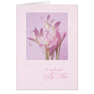 Mother's Day for Big Sister Greeting Card