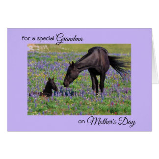 Mother's Day for Grandma Mare & Foal Photo Note Card