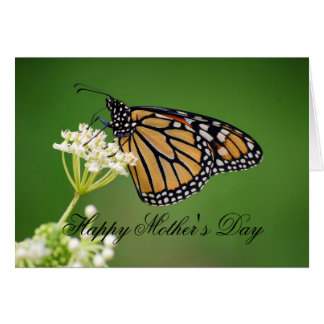 Mother's Day Monarch Butterfly on White Milkweed Card