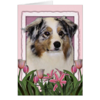Mothers Day - Pink Tulips - Australia Shepherd Greeting Cards