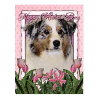 Mothers Day - Pink Tulips - Australia Shepherd Postcard