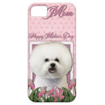 Mothers Day - Pink Tulips - Bichon Frise iPhone 5 Cover