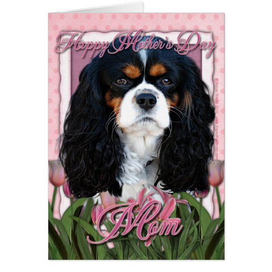 Mothers Day - Pink Tulips - Cavalier - Tri-Colour Card
