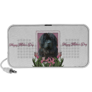 Mothers Day - Pink Tulips - Newfoundland Travelling Speakers