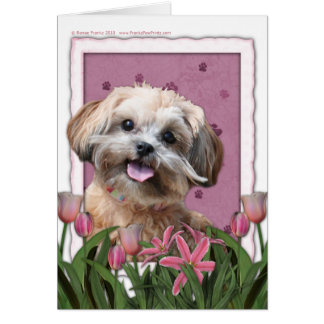 Mothers Day - Pink Tulips - ShihPoo - Maggie Card