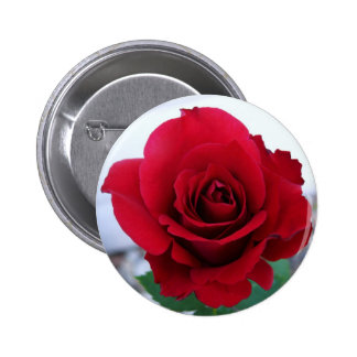 Mother's Day Red Rose Buttons