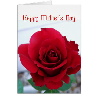 Mother's Day Red Rose Greeting Card