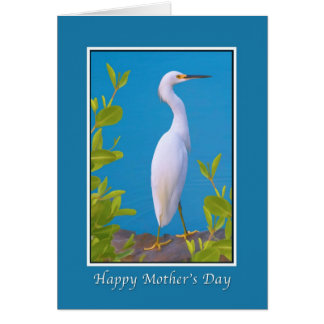 Mother's Day, Snowy Egret at the Pond Greeting Cards
