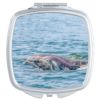 Mother's Love Dolphin & Baby Compact Mirror
