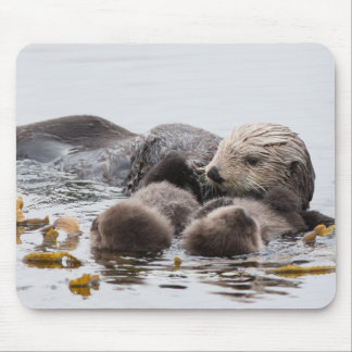 Mothers Love Mouse Pad – Otter