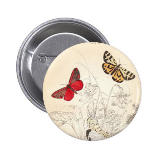 Moths and Butterflies 6 Cm Round Badge