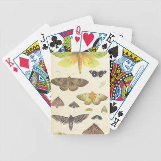 Moths and Butterflies of New Zealand Bicycle Playing Cards