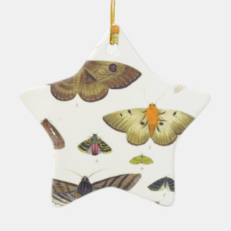 Moths and Butterflies of New Zealand Ceramic Star Decoration