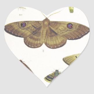 Moths and Butterflies of New Zealand Heart Sticker