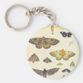 Moths and Butterflies of New Zealand Key Ring