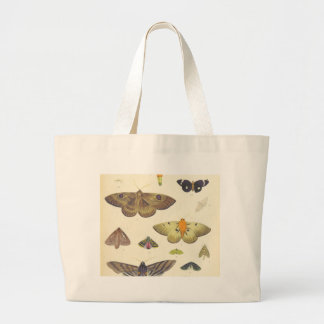 Moths and Butterflies of New Zealand Large Tote Bag