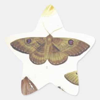 Moths and Butterflies of New Zealand Star Sticker