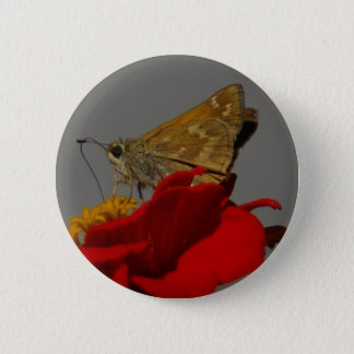 Moths and Red Zinnia 6 Cm Round Badge