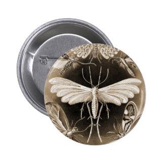 Moths Pin
