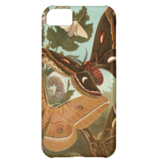 Moths Bugs Insect Nature Butterfly Caterpillar iPhone 5C Case