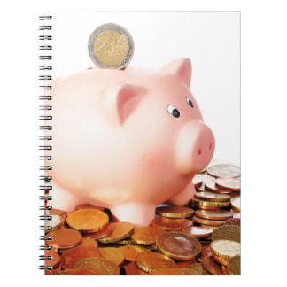Motive for euro notebook