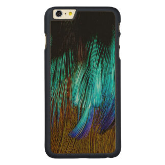 Motmot Feather Abstract Carved Maple iPhone 6 Plus Case