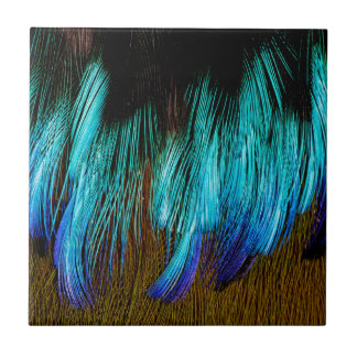 Motmot Feather Abstract Small Square Tile