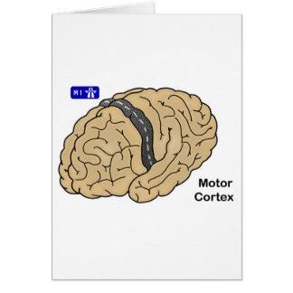 Motor Cortex Card