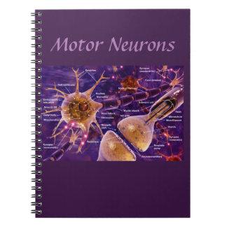 Motor Neurons Notebooks