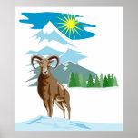 Mouflon Sheep Mountain Goat Poster
