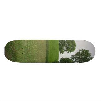 Mound On Top Of Navan Fort Custom Skate Board