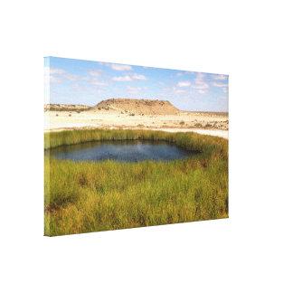 Mound springs canvas print