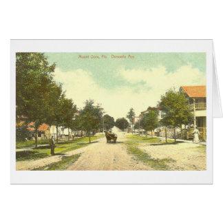 Mount Dora, FL - 1907 Card