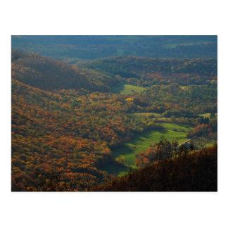 Mount Greylock Foliage View Postcard