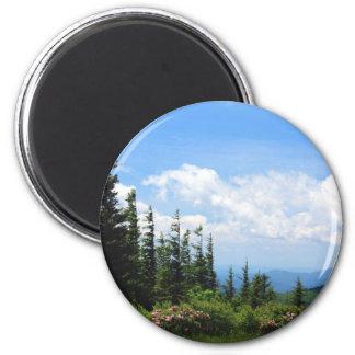 Mount Mitchell State Park 6 Cm Round Magnet