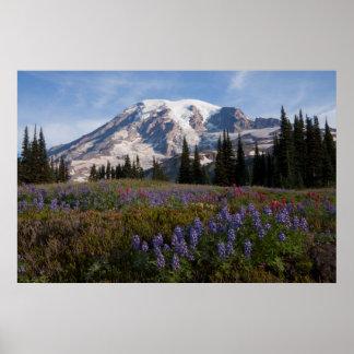 Mount Rainier National Park, Mount Rainier 3 Poster