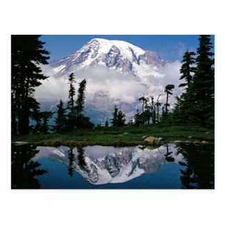 Mount Rainier relected in a mountain tarn Postcard