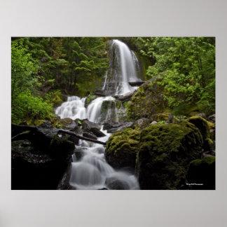 Mount Rainier Waterfall Poster