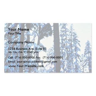 Mount Shasta Business Card