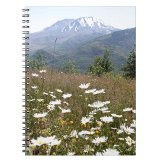 Mount St. Helens Notebook