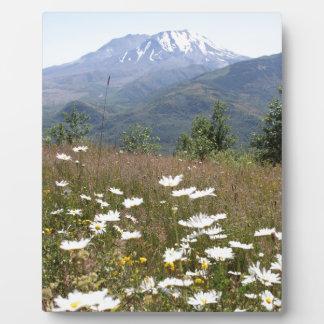 Mount St. Helens Plaque