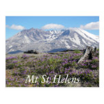 Mount St Helens Post Cards