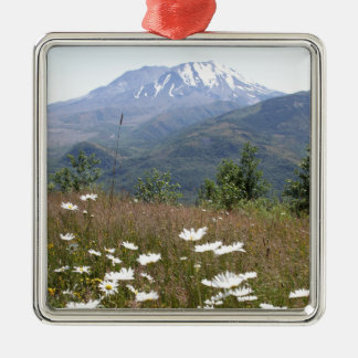 Mount St. Helens Silver-Colored Square Decoration