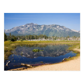 Mount Tallac Reflection Postcard