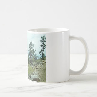 Mount Whitney Trail View #5 Mug - by Fern Savannah