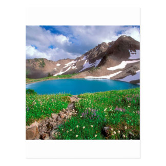Mountain Alpine Tranquility Olympic Park Postcard
