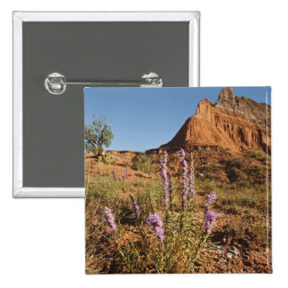 Mountain and Gayfeather 15 Cm Square Badge